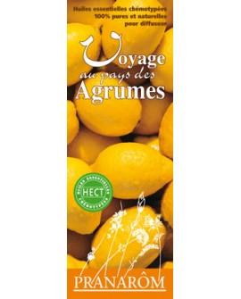 Voyage au pays des agrumes, mélange d'huiles essentielles pour diffuseur de pranarom