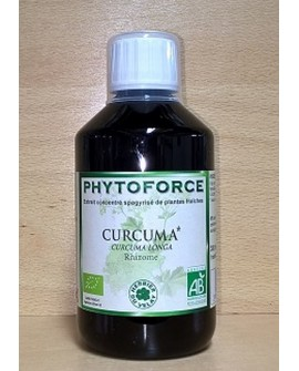 Phytoforce CURCUMA - Vecteur Energy