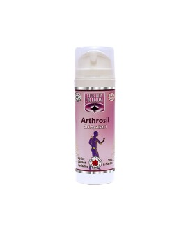 Arthro'Sil Gel bio - Vecteur Energy