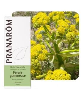 Férule gommeuse (Galbanum), Huile Essentielle de Pranarom