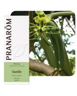 Vanille (Absolue) Huile Essentielle de Pranarom