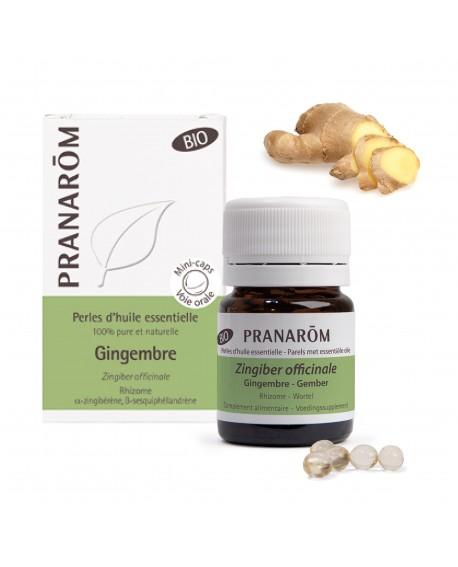 Gingembre BIO, Perles d'huile essentielle de Pranarom