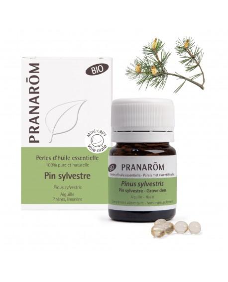 Pin sylvestre BIO, Perles d'huile essentielle de Pranarom