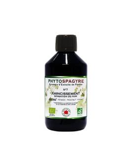 Phytospagyrie n°7 Amincissement - Vecteur Energy