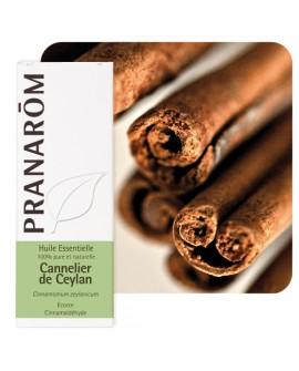 Cannelier de Ceylan (écorce) 5 ml, Huile Essentielle de Pranarom