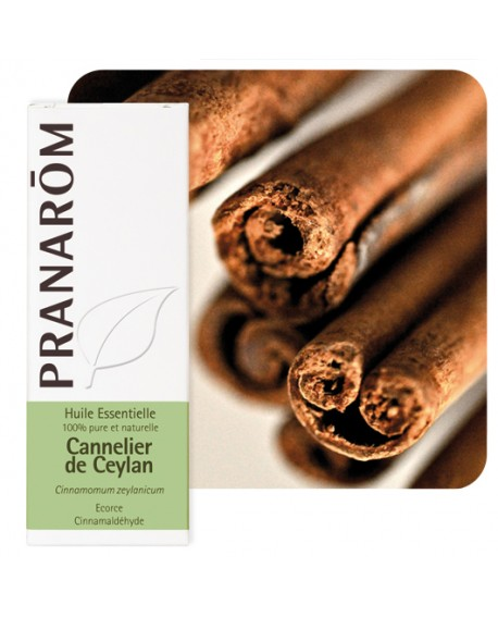 Cannelier de Ceylan (écorce), Huile Essentielle de Pranarom