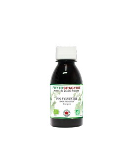 Phytospagyrie Pin Sylvestre BIO - Vecteur Energy