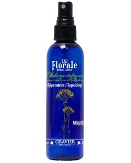 Eau florale hélichryse italienne, immortelle BIO ou hydrolat (Circulatoire,Cicatrisante) de GRAVIER
