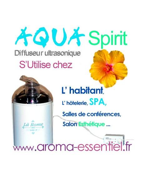 Aqua spirit micro diffuseur pour huiles essentielles