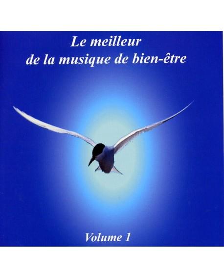 Le meilleur de la musique de bien-être (cd de relaxation)